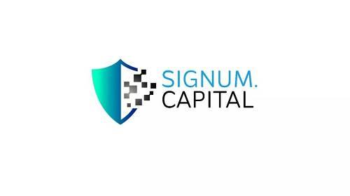 Signum Capital 注册于新加坡,却是韩国区块链投资领域的重要机构。该机构专注为区块链项目提供资金和咨询,经常在预售轮便投资项目,包括 Zilliqa、Sentinel Protocol、TenX、QuarkChain。在韩国,该机构投资的项目包括 FANTOM、Airbloc、Cosmochain。