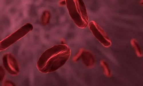 科技日报记者从一家临盆血液成品的企业了解到,在我国,血液成品临盆法式包括质料血浆收集检测、临盆企业复检、病毒灭活、血液成品出厂检测、药监部分批签发等多个环节。