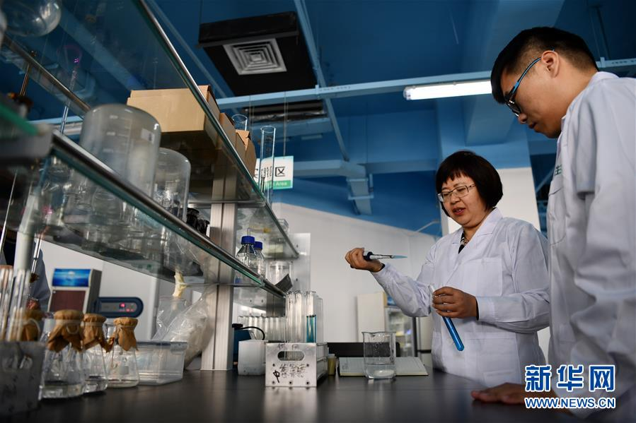 在天津滨海-中关村科技园内,研究人员在天津慧智百川生物工程有限公司的实验室里工作(2019年1月29日摄)。新华社记者 李然
