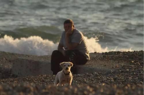 英国布莱顿海滩的美丽风景