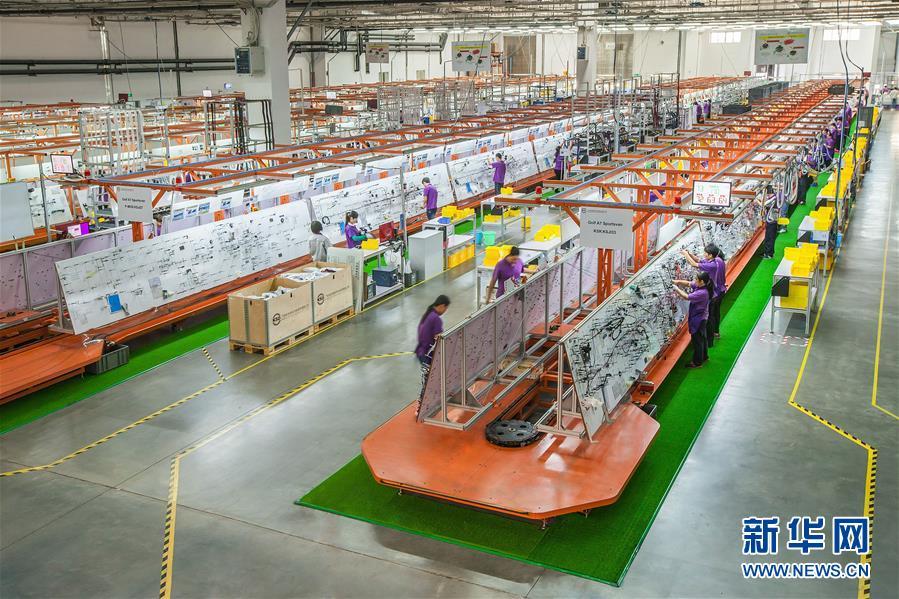 工人在得润电子位于广东省江门市的汽车线束生产车间工作(资料照片)。 新华社发