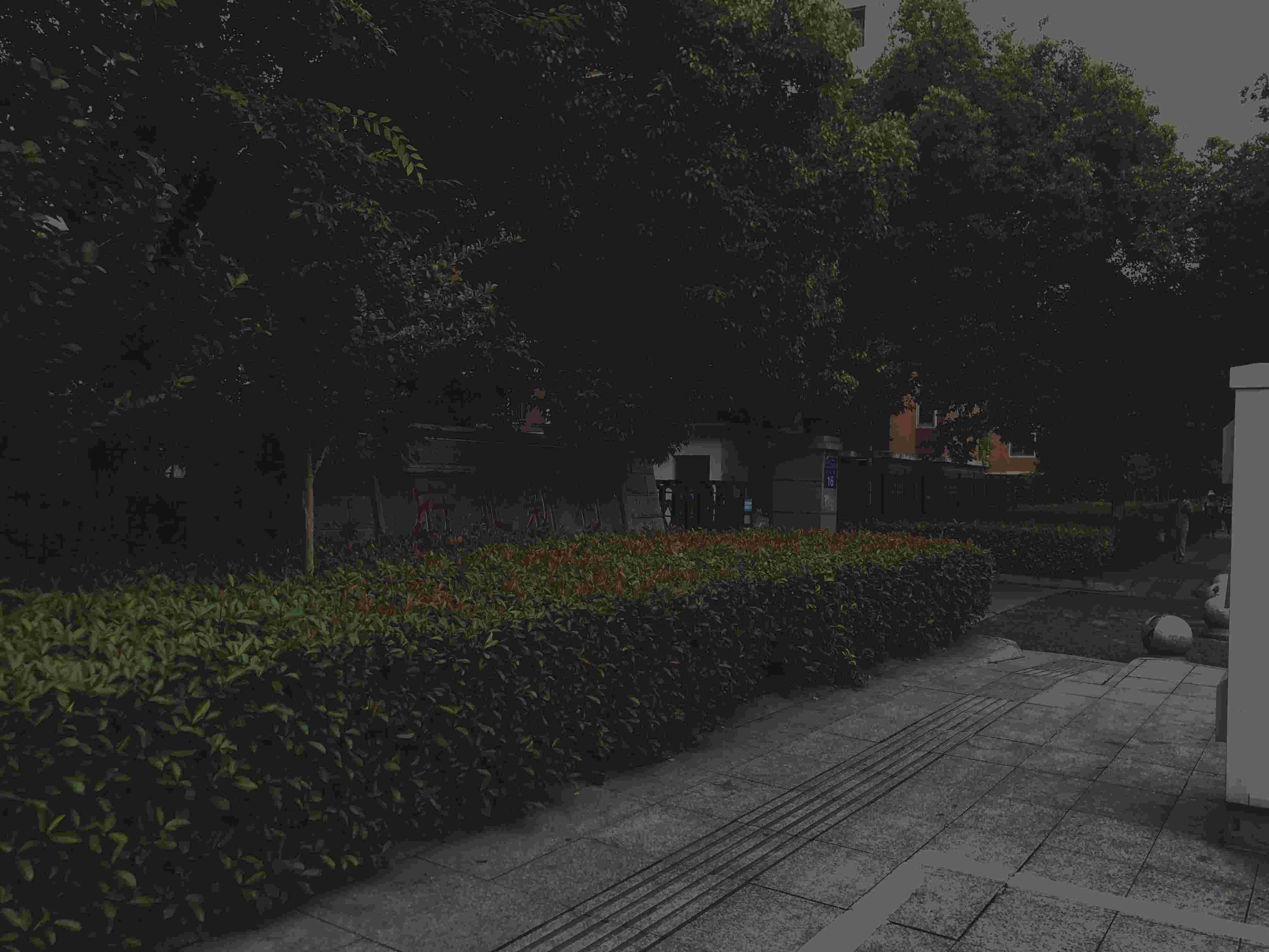 周某芬一处房产所在地常州市府北新村。 新京报记者 卢通 摄