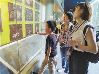 南京:古生物博物馆里穿越时空