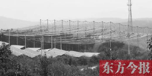 位于南阳市南召县皇后乡娘娘庙村的河南省第一座高架高效光伏电站