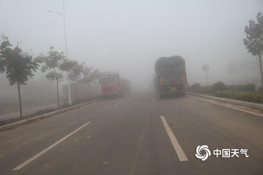 股票杠杆交易平台河南孟州西虢镇:大雾弥漫 车辆缓慢前行