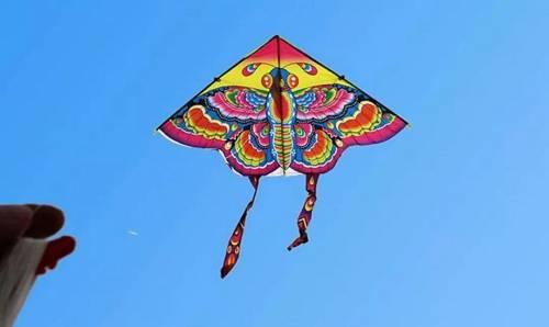 可潍坊的风筝节纷歧般,在潍坊,万物皆可做风筝。