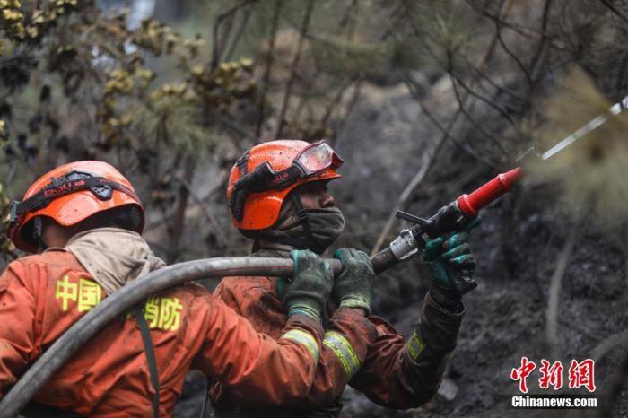 西藏林芝巴宜区森林火灾扑灭