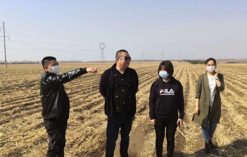 黑龙江省甘南县支公司经理王彪下乡与农户沟通农险投保事宜,与农户在地间确认保险标的位置及亩数。