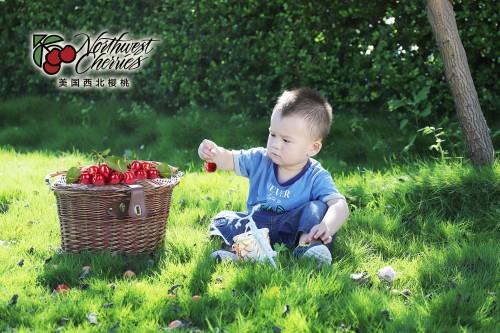 又一波爱的浪潮 美国西北樱桃带来生活原本的美好!