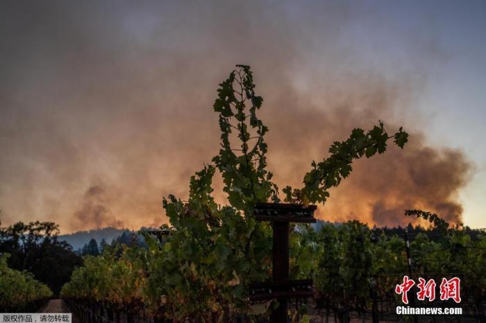 强风增加山火风险 美加州将有超过36万户断电