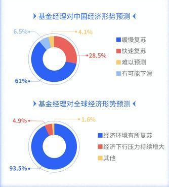 usdt支付接口(caibao.it):超万亿资金操盘手展望2021:科技、电动汽车和大消费板块受追捧
