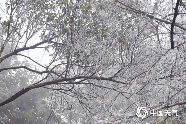 电银付官网(dianyinzhifu.com):元旦假期天下雨雪稀疏气温反弹 局地累计升温达10℃
