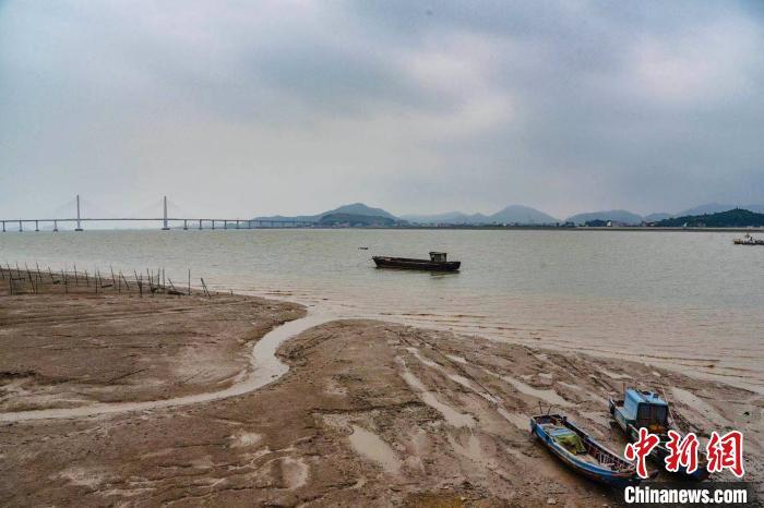 """浙江大力建设海洋强省 海岛人大代表称""""特别兴奋"""""""