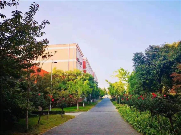 河南一高校将被司法拍卖 起拍价6.73亿元 2万人围观