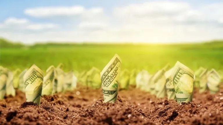 """【美股掘金】股息收益率超6%,这三只能否成投资者""""造富机""""?"""