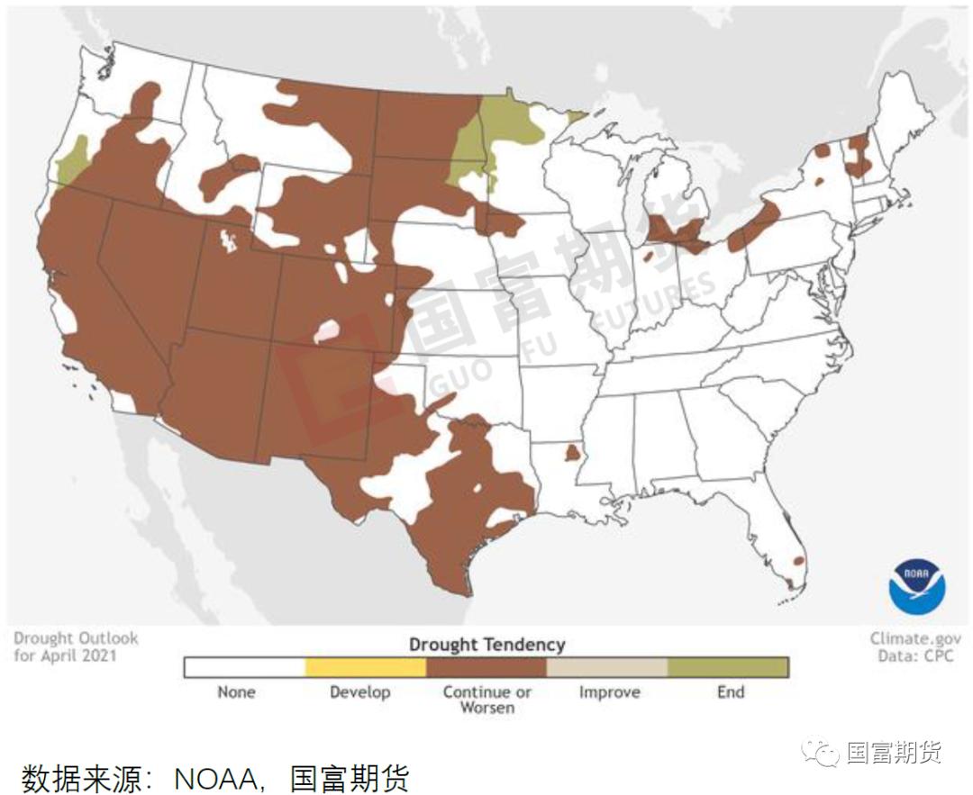 【USDA】4月供需报告解读暨后续展望