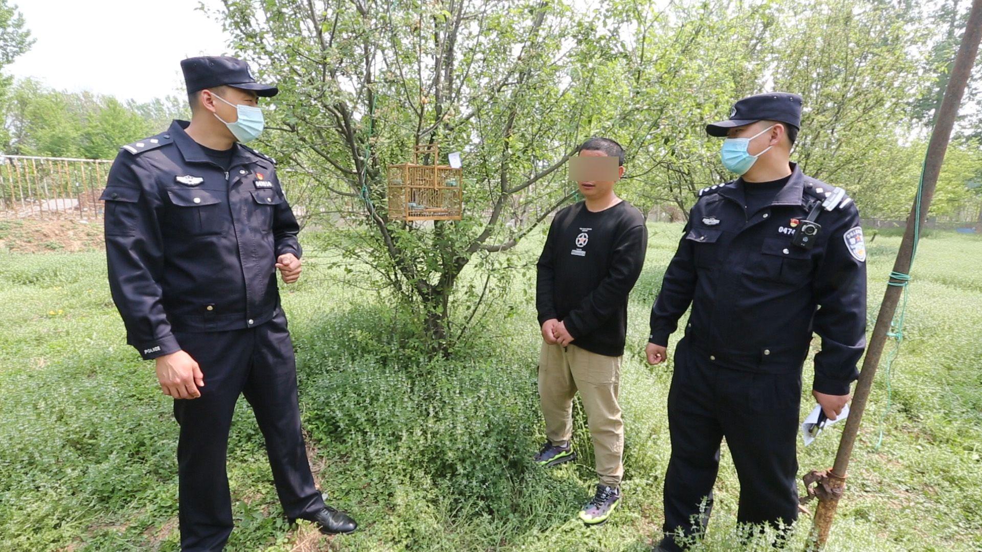 男子架设粘网、捕鸟笼涉嫌非法狩猎被抓,警方解救21只野生鸟