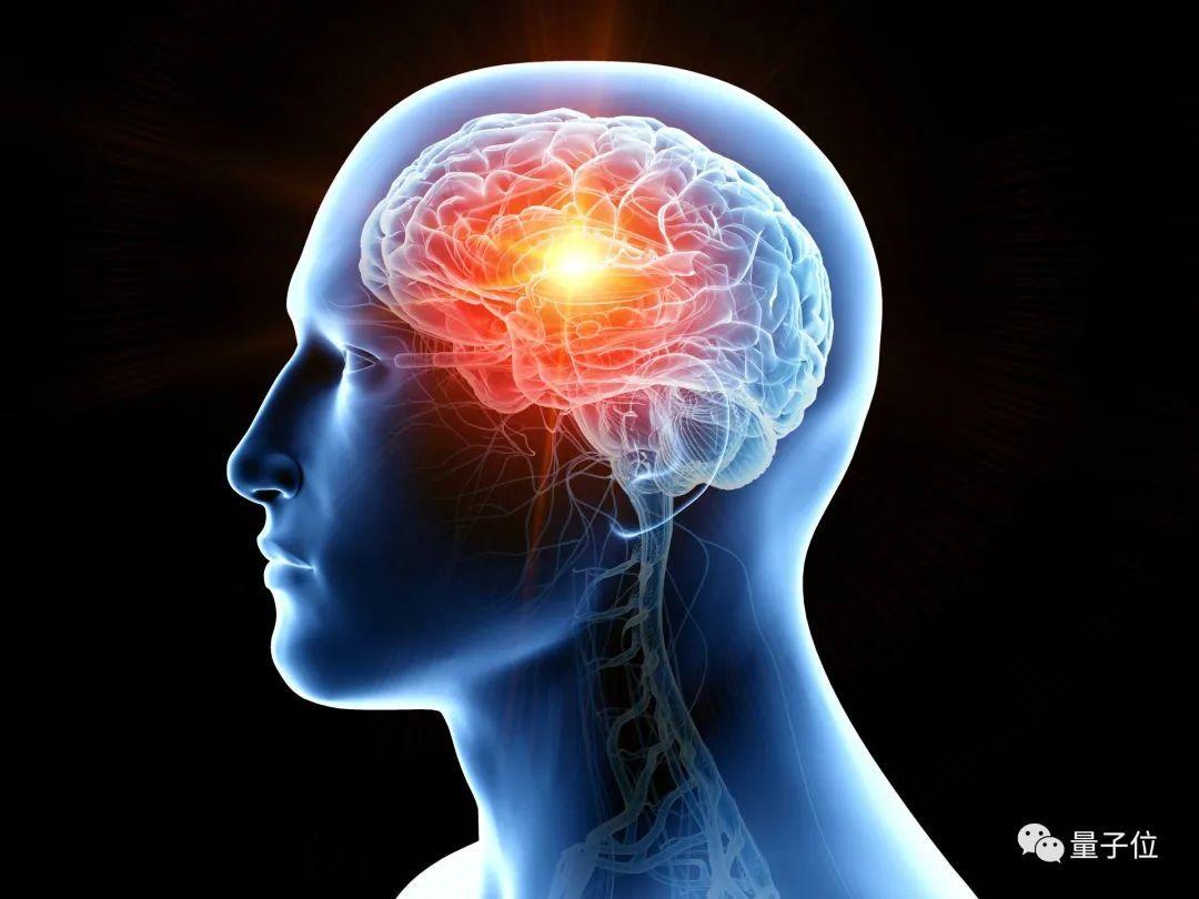 正经聊一聊脑机接口的发展现状 脑科学开放日