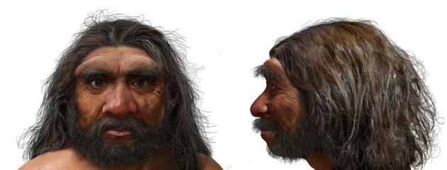 """五个你可能不知道的人类物种:""""霍比特人""""身高只有90厘米"""