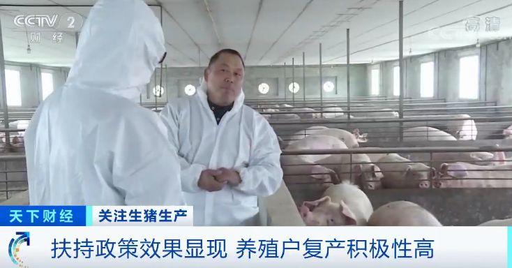 四川省绵阳三台县是国家生猪调出大县,常年出栏生猪百万头以上。在猪瘟疫情爆发期间,这里受到了不小的影响,很多养殖户甚至有了放弃养猪的念头。